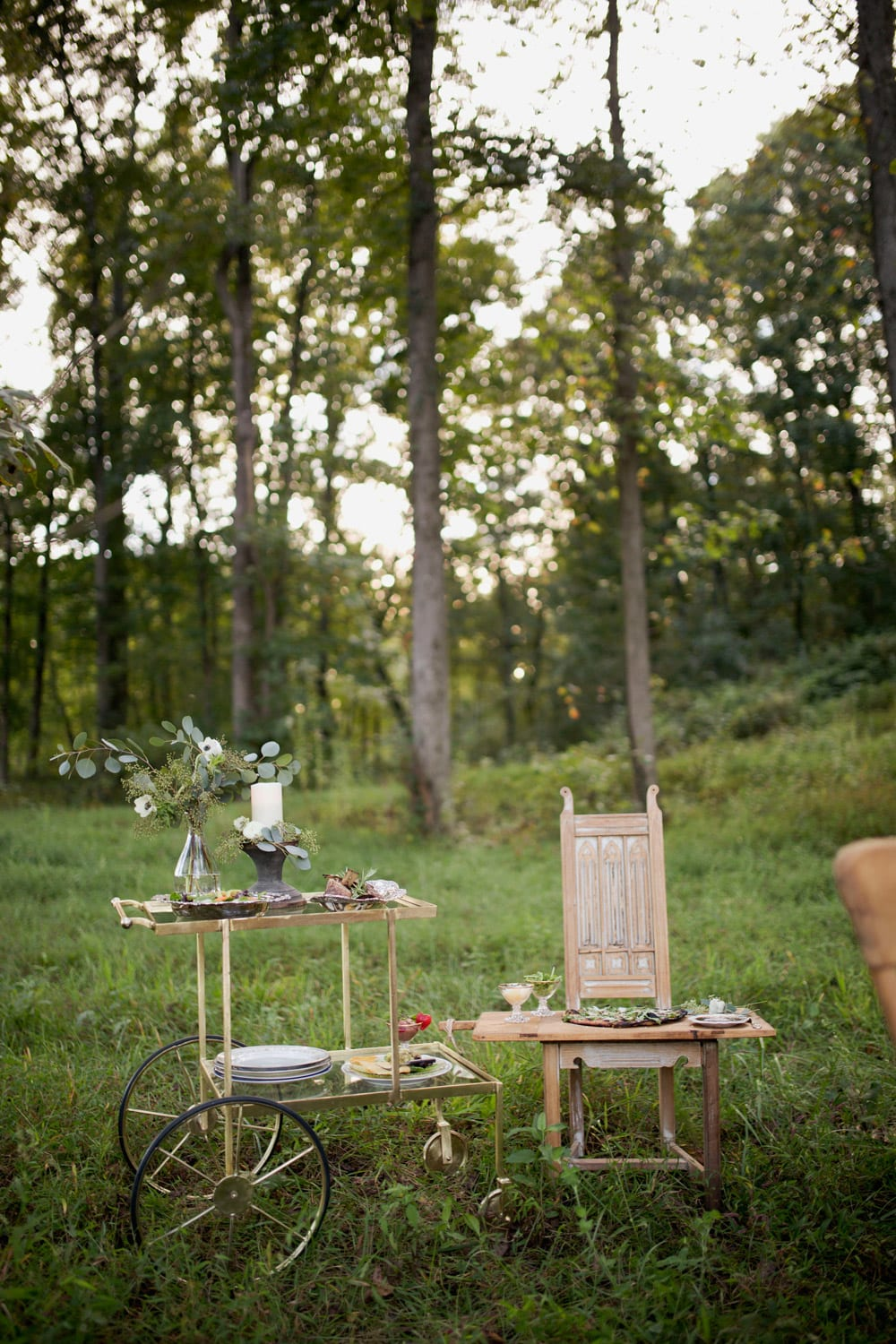 Glass cart and chair in the woods