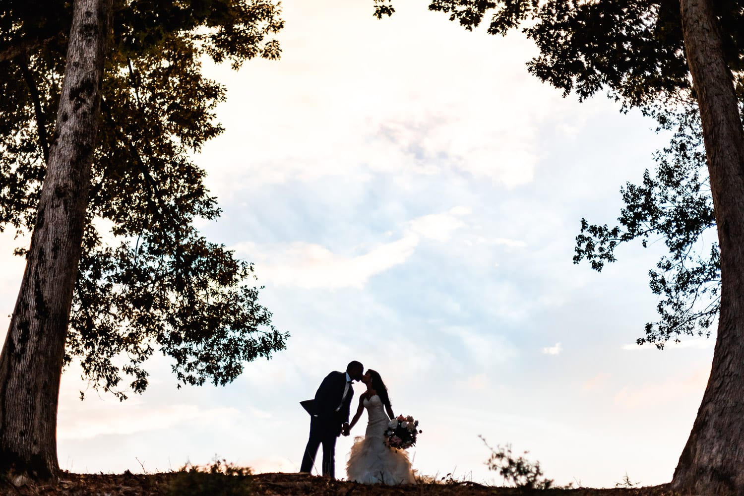 Bride and groom kiss between two trees