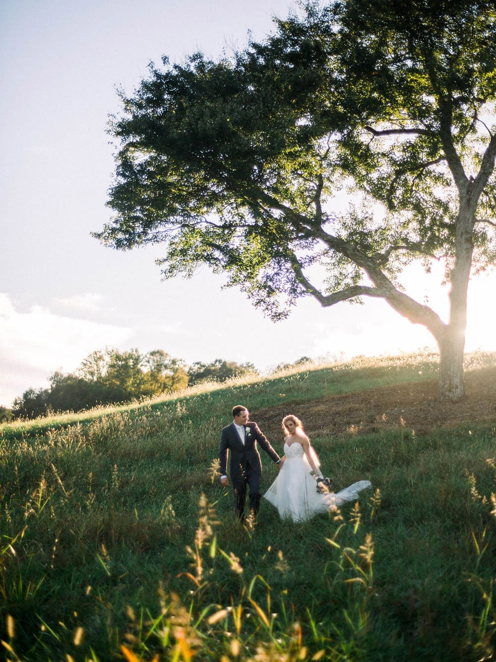 Bride and groom walk along the pasture by tree